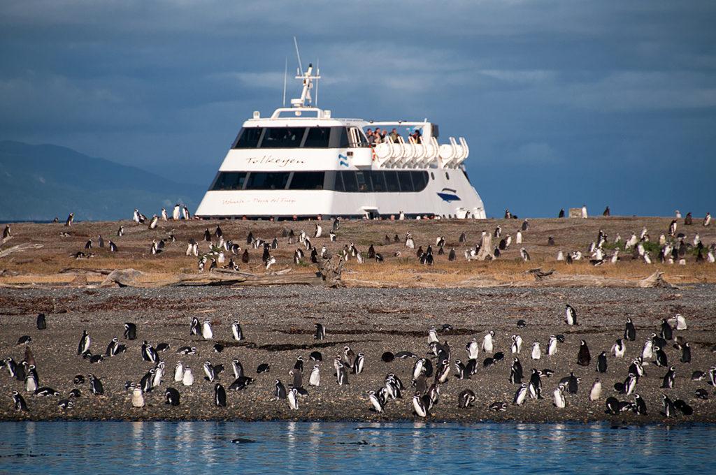 Rejs po Kanale Beagle'a, wyspa pingwów